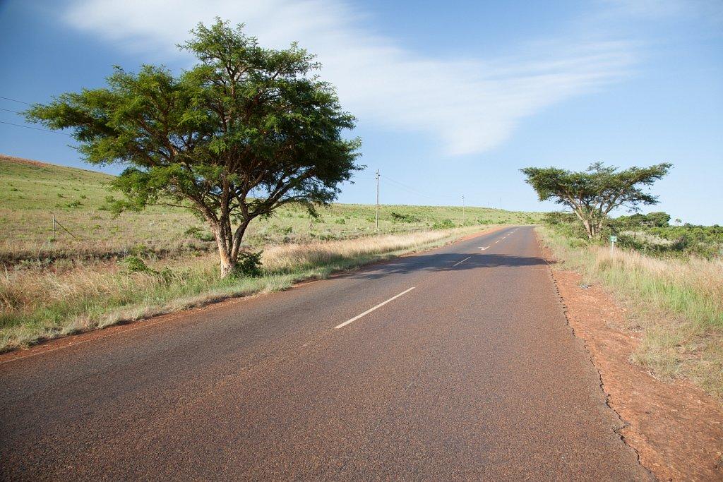 Panorama Route, Südafrika (2015)